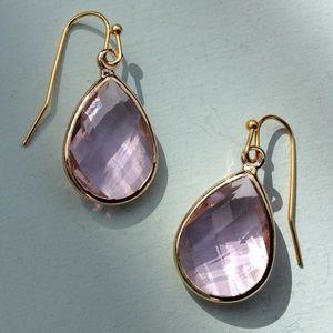 New Drop Earrings/ Anthropologie Jewelry Bag